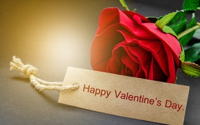 Картинка red, love, rose, romantic, gift, valentine`s day
