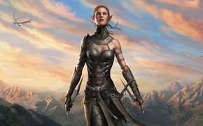 Картинка girl, fantasy, game, sky, landscape, nature, mountains, clouds, birds, dragon, weapons, elf, digital art, artwork, …