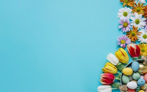 Картинка Цветы, Тюльпаны, Пасха, Яйца, Фон, Праздник, Хризантемы
