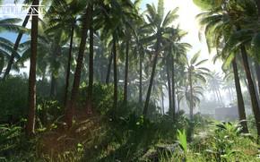 Картинка природа, пальмы, растительность, Star Wars Battlefront, Scarif Vegetation