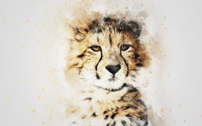 Обои взгляд, морда, картина, акварель, леопард