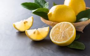 Обои листья, Лимон, цитрус, миска