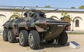 Обои Luchs A2, боевая, Рысь, разведывательная машина, Spahpanzer 2