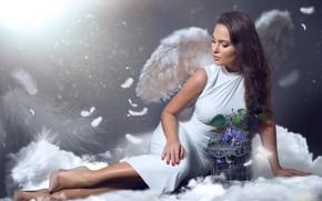 Картинка девушка, цветы, крылья, ангел, клетка
