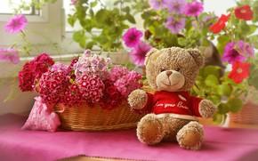 Обои мишка, корзина, плюшевый, игрушка, цветы