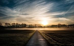 Картинка дорога, свет, велосипед, туман, утро