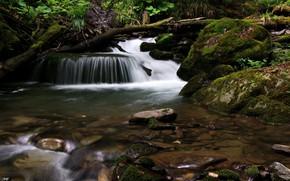 Картинка вода, ручей, поток