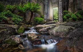 Картинка осень, поток, water, stream, вода, waterfall, листья, autumn, leaves, водопад