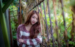Картинка взгляд, девушка, волосы, азиатка, свитер