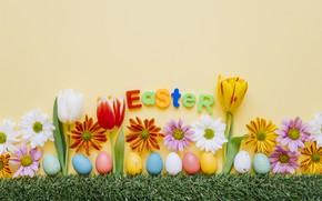 Картинка Тюльпаны, Пасха, Яйца, Праздник