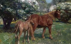 Картинка животные, пейзаж, природа, картина, Лошади Маре и Фол на Весеннем Лугу, Альфред Джеймс Маннингс, Alfred …