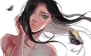 Картинка голубые глаза, рука, ветер, портрет девушки, лицо, art, Hiruna454, белый фон, длинные волосы, бабачки, плечи