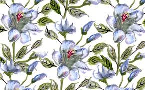 Картинка Цветы, Фон, Текстура