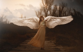 Обои крылья, девушка, Araceli Bazan