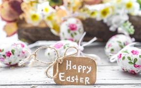 Обои decoration, Easter, pastel, Пасха, happy, яйца крашеные, spring, eggs, flowers, цветы
