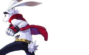 Картинка rabbit, anime, animal, hero, japanese, gloves, bakemono, Summer Wars
