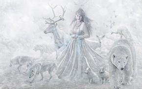 Картинка животные, девушка, звери, олень, медведь, волки