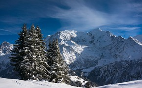Картинка снег, горы, Франция, ели, Альпы, France, Alps, Монблан, Mont Blanc