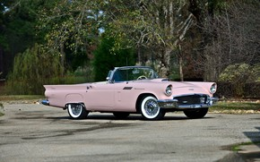 Картинка vintage, convertible, pink, classic, 1957, old car, Ford Thunderbird
