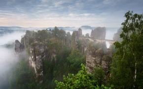Картинка лето, горы, туман, скалы, весна, утро, Германия, дымка