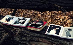 Картинка лес, листья, дерево, листва, книги, очки, книга, телефон, бревно, iphone, forest, модели, leaves, солнечные очки, …