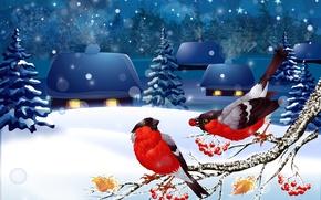 Картинка зима, снег, пейзаж, снегири
