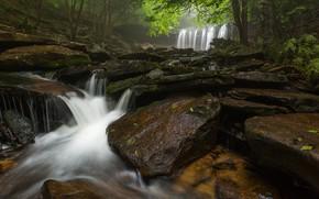 Картинка лес, природа, водопад, поток