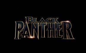 Картинка cinema, Marvel, movie, 2018, T'Challa, Black Panther, fil, Wakanda