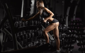 Обои workout, female, mirror, fitness
