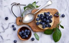 Картинка ягоды, черника, пирожное, крем, десерт, Anna Verdina