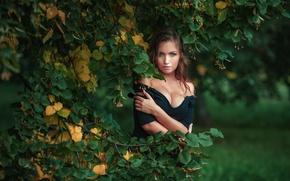 Обои Nicka, осень, ветки, фотограф, лето, Dmitrij Butvilovskij, девушка, липа, дерево, Ника Колосова, взгляд