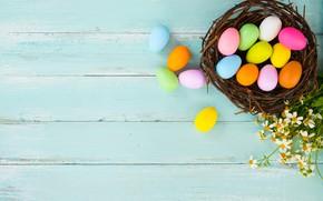 Картинка цветы, корзина, яйца, весна, colorful, Пасха, wood, flowers, spring, Easter, eggs, decoration, Happy, tender