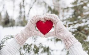 Картинка зима, снег, любовь, сердце, елка, red, love, heart, winter, варежки, snow, romantic, hands, valentine, fir …