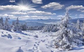 Картинка зима, лес, небо, солнце, облака, лучи, снег, горы, ветки, следы, холмы, тропа, ели, мороз, сугробы, …