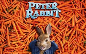 Картинка кролик, морковь, Peter Rabbit
