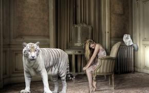 Картинка кошка, девушка, тигр, комната