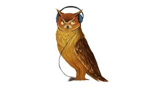 Картинка музыка, сова, птица, наушники, светлый фон, owl