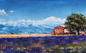 Картинка лето, Франция, Европа, художник, живопись, лаванда, Прованс, холст масло, Parsadanov, лавандовые поля
