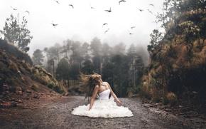 Картинка дорога, лес, девушка, птицы, настроение, волосы, ситуация, платье