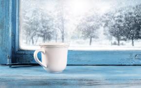 Картинка холод, зима, снег, окно, мороз, чашка, winter, snow, cup, window