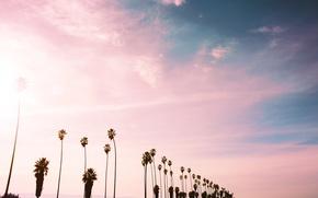 Картинка небо, облака, пальмы, розовые