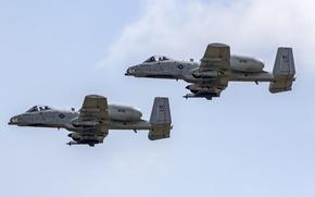 Картинка Thunderbolt II, A-10C, штурмовик, одноместный, двухдвигательный