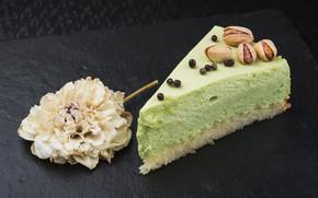 Картинка цветок, пирожное, орехи, крем, десерт