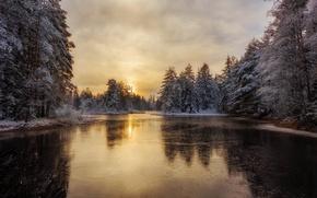Картинка зима, лес, речка, Швеция, Arvika