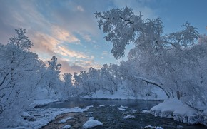 Картинка зима, небо, снег, деревья