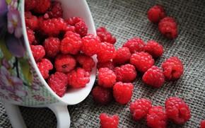 Картинка ягоды, малина, натюрморт, дача