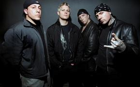 Картинка Hardcore, Rapcore, Biohazard, Groove metal, Billy Graziadei, Danny Schuler, Evan Seinfeld, Bobby Hambel, Crossover thrash
