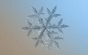 Картинка лед, зима, узор, снежинка, симметрия