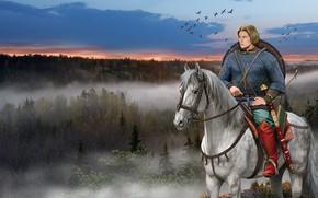 Обои Лошадь, Лес, Меч, Кольчуга, Щит, Древняя Русь, Cлавянский Воин