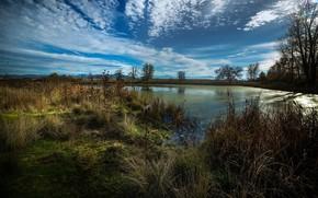Картинка небо, пейзаж, природа, болото, красота